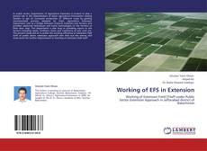 Portada del libro de Working of EFS in Extension