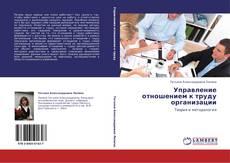 Bookcover of Управление отношением к труду организации