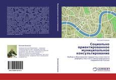Bookcover of Социально ориентированное муниципальное консультирование