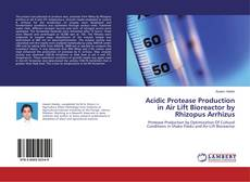 Bookcover of Acidic Protease Production in Air Lift Bioreactor by Rhizopus Arrhizus