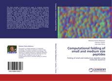 Copertina di Computational folding of small and medium size peptides