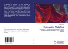 Combustion Modelling kitap kapağı