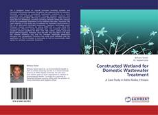 Couverture de Constructed Wetland for Domestic Wastewater Treatment