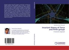 Bookcover of Invariant theory of Torus and finite groups