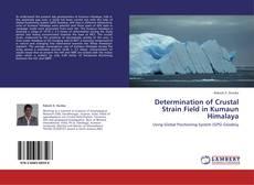 Copertina di Determination of Crustal Strain Field in Kumaun Himalaya
