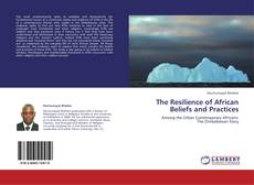 The Resilience of African Beliefs and Practices kitap kapağı