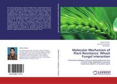 Copertina di Molecular Mechanism of Plant Resistance: Wheat Fungal interaction