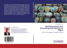 Bookcover of Multilingualism and Ethnolinguistic Identity in Nepal