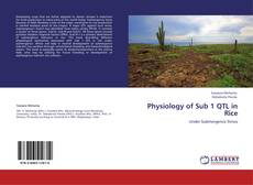 Buchcover von Physiology of Sub 1 QTL in Rice