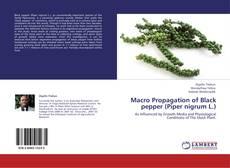 Portada del libro de Macro Propagation of Black pepper (Piper nigrum L.)