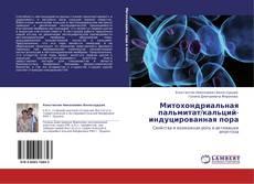 Buchcover von Митохондриальная пальмитат/кальций-индуцированная пора