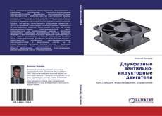 Bookcover of Двухфазные вентильно-индукторные двигатели