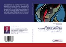 Bookcover of A Freshwater Murrel Channa Gachua, channidae