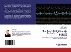 Copertina di Real Time Identification & Control of Pneumatic Systems
