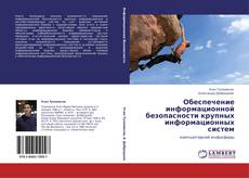 Bookcover of Обеспечение информационной безопасности крупных информационных систем