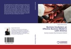 Bookcover of Business Incubators an Effective Business Model in Latin America