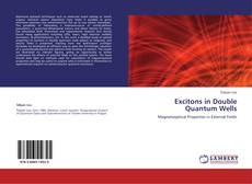Bookcover of Excitons in Double Quantum Wells