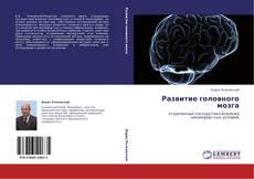 Обложка Развитие головного мозга