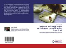 Technical efficiency in the zimbabwean manufacturing industries的封面