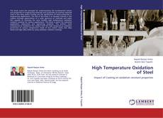 Bookcover of High Temperature Oxidation of Steel