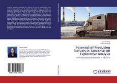 Bookcover of Potential of Producing Biofuels in Tanzania: An Explorative Analysis