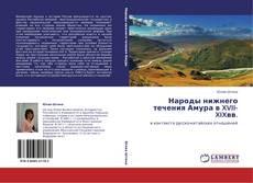 Народы нижнего течения Амура в XVII-XIXвв.的封面