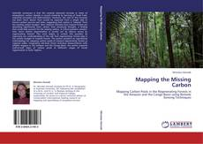 Bookcover of Mapping the Missing Carbon