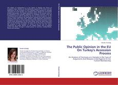 The Public Opinion in the EU On Turkey's Accession Process kitap kapağı