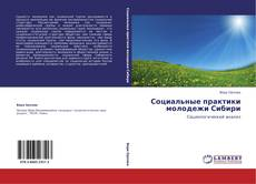 Bookcover of Социальные практики молодежи Сибири