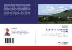 Couverture de Carbon Stock in Church Forests