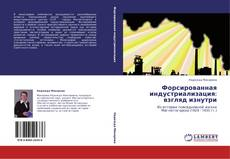 Обложка Форсированная индустриализация: взгляд изнутри