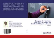 Buchcover von Compact Composition Operators on Weighted Hardy and Bergman Spaces