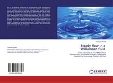 Copertina di Steady flow in a   Williamson fluid