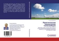 Bookcover of Практическое применение топинамбура