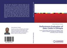 Bookcover of Performance Evaluation of Zebu Cattle in Ethiopia