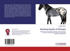 Bookcover of Working Equids of Ethiopia