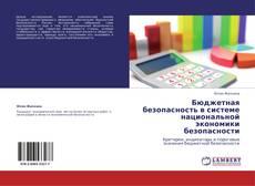 Обложка Бюджетная безопасность в системе   национальной экономики безопасности