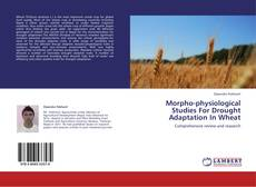 Morpho-physiological Studies For Drought Adaptation In Wheat的封面