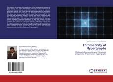 Chromaticity of Hypergraphs kitap kapağı