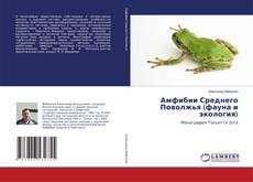 Амфибии Среднего Поволжья(фауна и экология)的封面