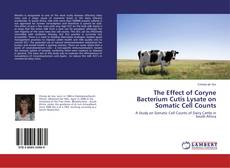 Portada del libro de The Effect of Coryne Bacterium Cutis Lysate on Somatic Cell Counts