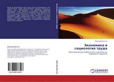 Bookcover of Экономика и социология труда