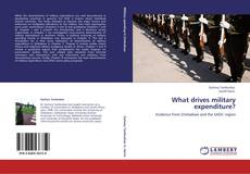 Bookcover of What drives military expenditure?