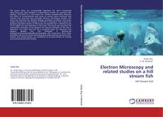 Bookcover of Electron Microscopy and related studies on a hill stream fish