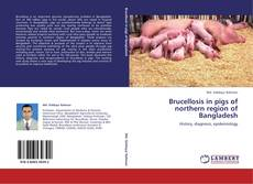 Обложка Brucellosis in pigs of northern region of Bangladesh