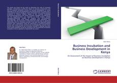 Business Incubation and Business Development in Kenya kitap kapağı