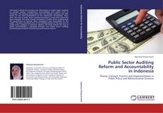 Bookcover of Public Sector Auditing Reform and Accountability in Indonesia