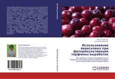 Обложка Использование вересковых при фиторекультивации торфяных выработок