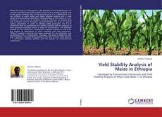 Couverture de Yield Stability Analysis of Maize in Ethiopia