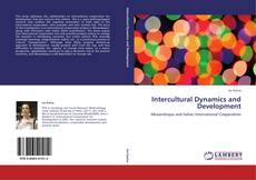 Intercultural Dynamics and Development kitap kapağı